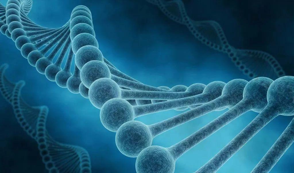 肺腺癌的发生发展(5):肺癌的驱动基因变异