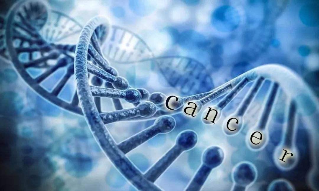 如何治疗驱动基因阴性晚期非小细胞肺癌患者?