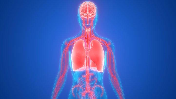 肺癌会转移到哪些部位?