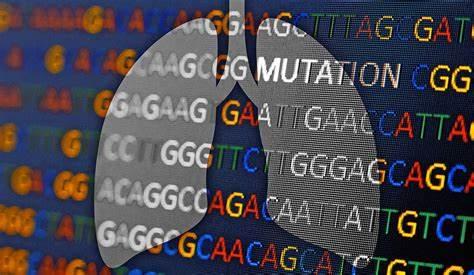 什么样的肺癌与家族遗传有关?