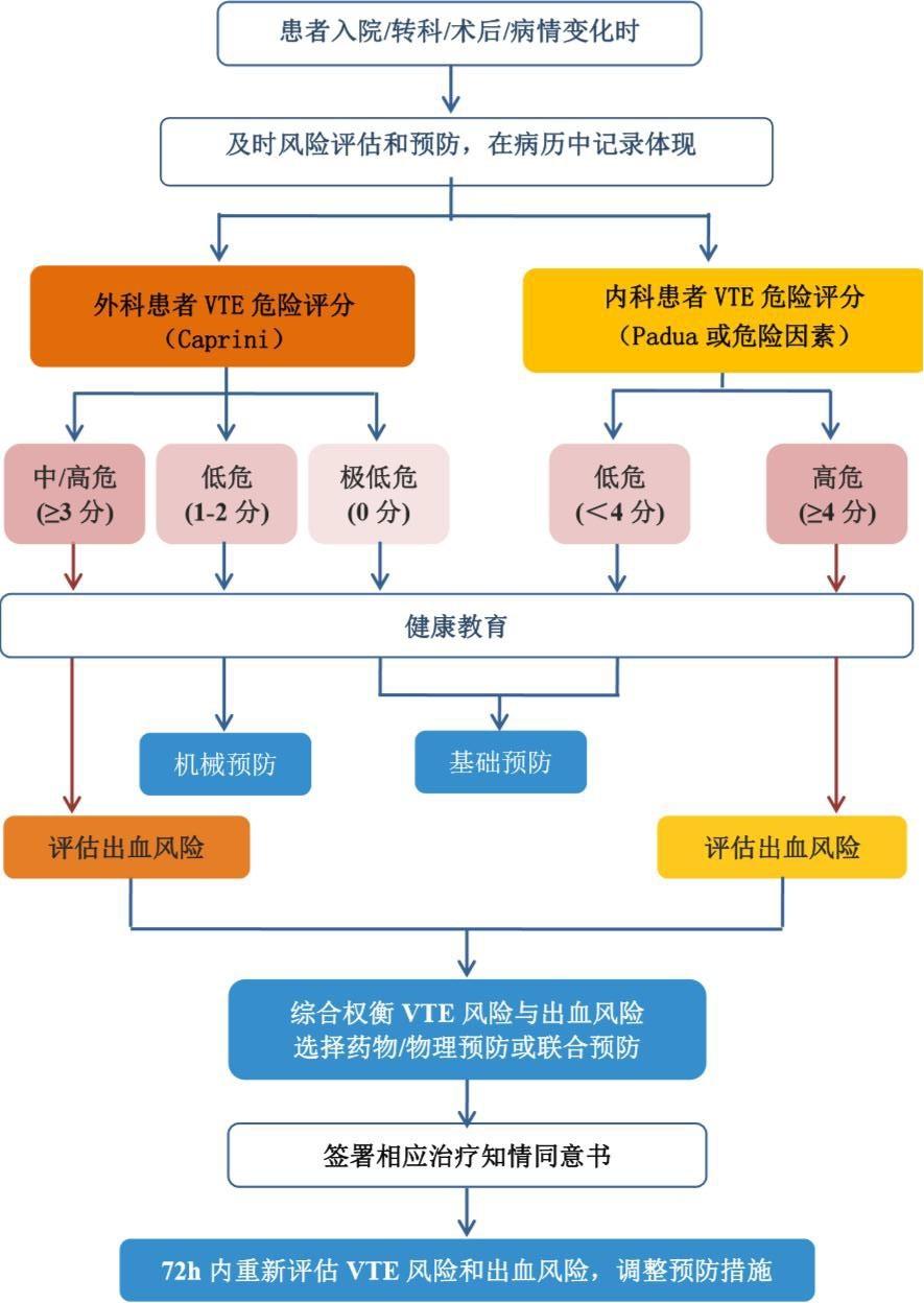 住院患者院内静脉血栓栓塞症(VTE)预防流程