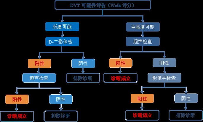 深静脉血栓形成(DVT)的诊断和治疗